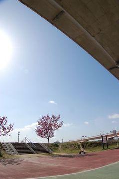 Dsc_8511inagawa