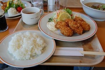 Dsc_3453kakifu