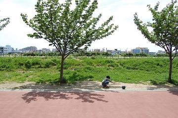 Dsc_5000inagawa