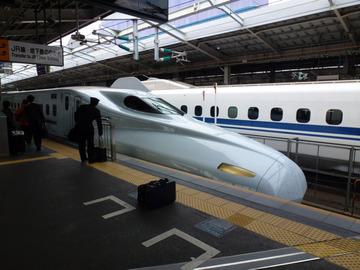 P1000881sakura