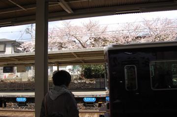 Dsc_9843okamoto
