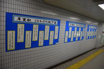 Dsc_0097kisinosato