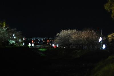 Dsc_0034yozakura