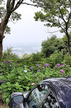 Dsc_0609satsukiyama