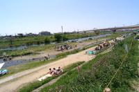 P5030061inagawa_1